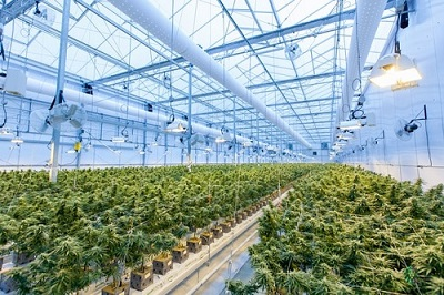 eiha Konsortium plant antrage auf novel food