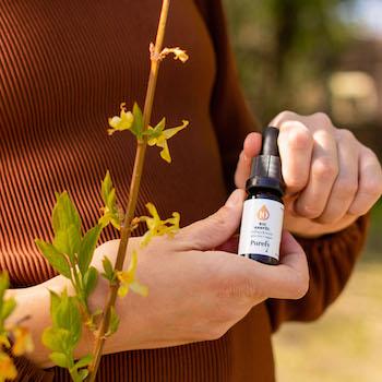 Purefy Bio Hanf 10% CBD Öl